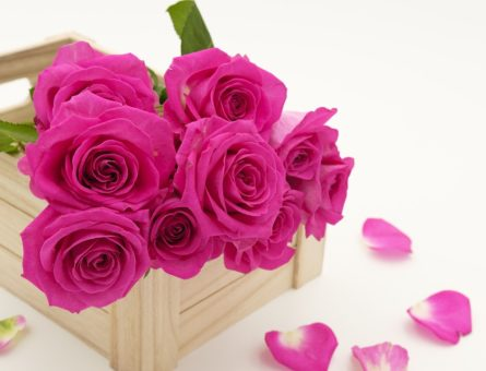 bouquet-3158355_960_720